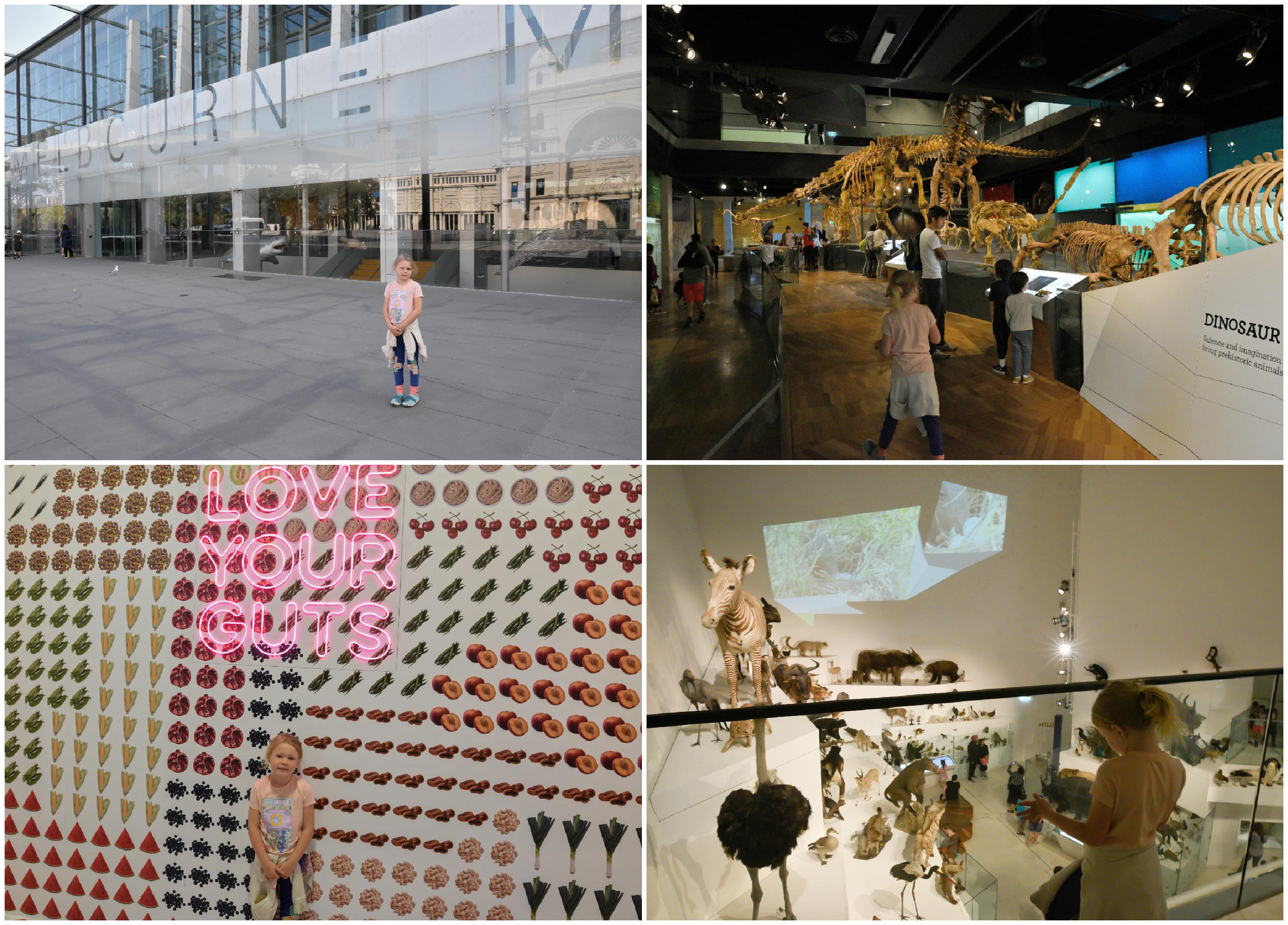 MelbourneMuseum1