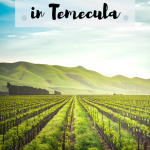 Temecula wineries family friendly
