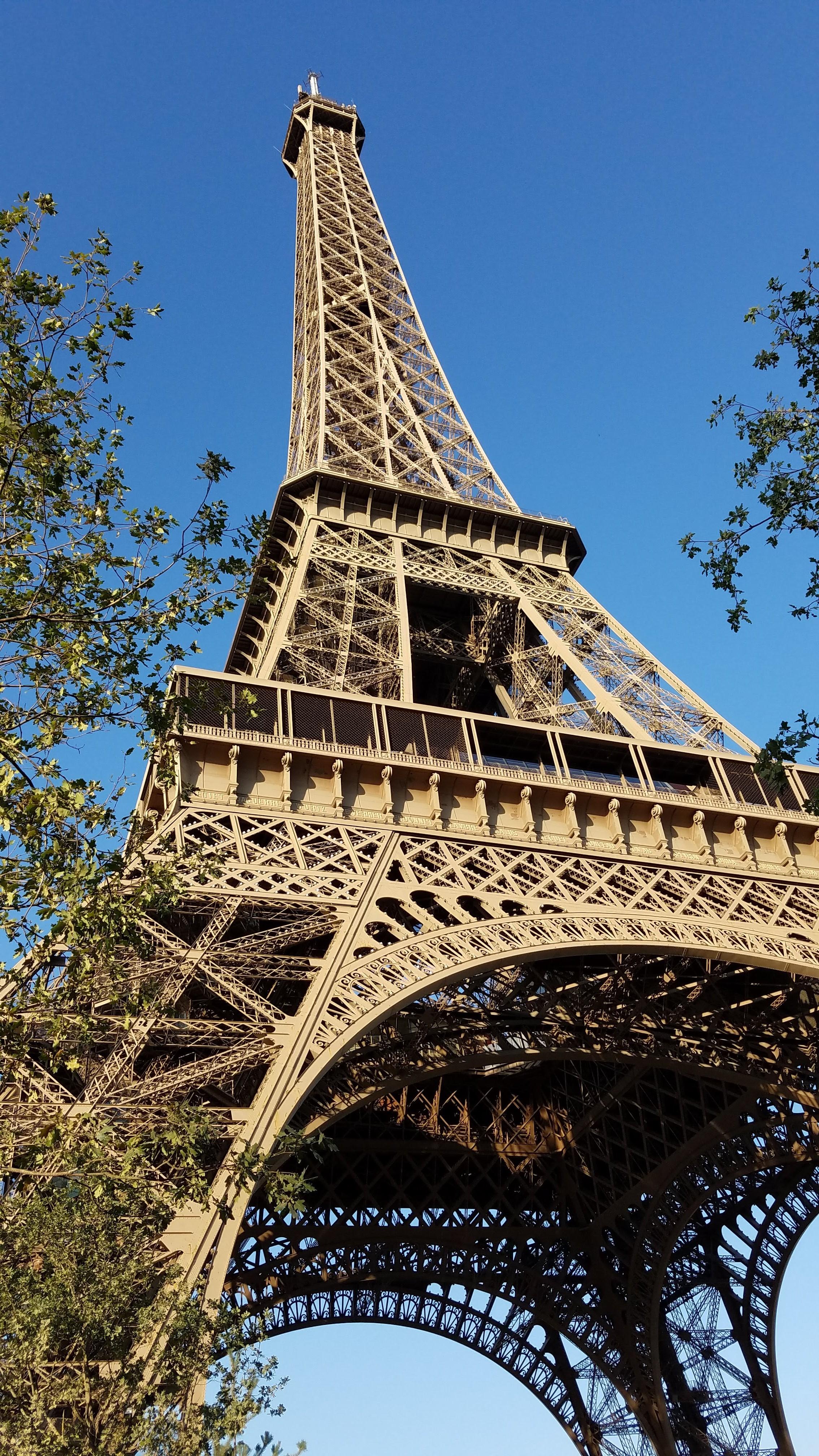 Sierra Schmidt-Paris.jpg