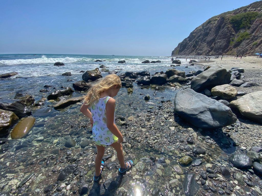 Best tide pools orange county