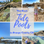 the best tide pools in orange county