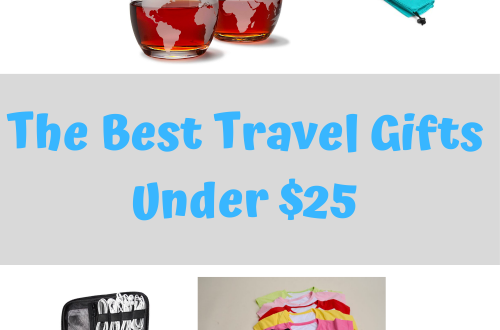 best travel gifts under $25