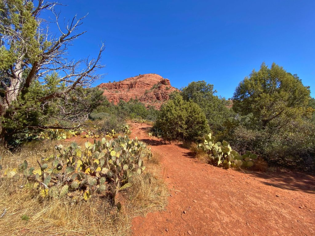 best kid friendly hiking trails in Sedona