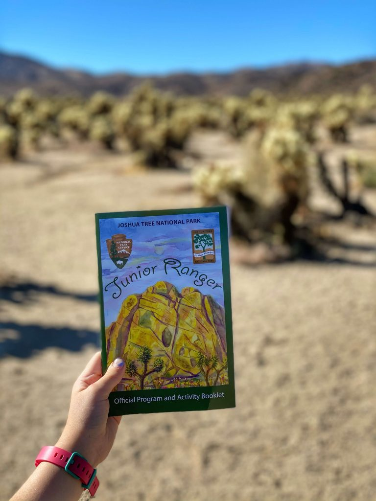 what to do in Joshua Tree national park with kids