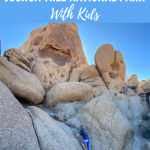 things to do in joshua tree national park with kids