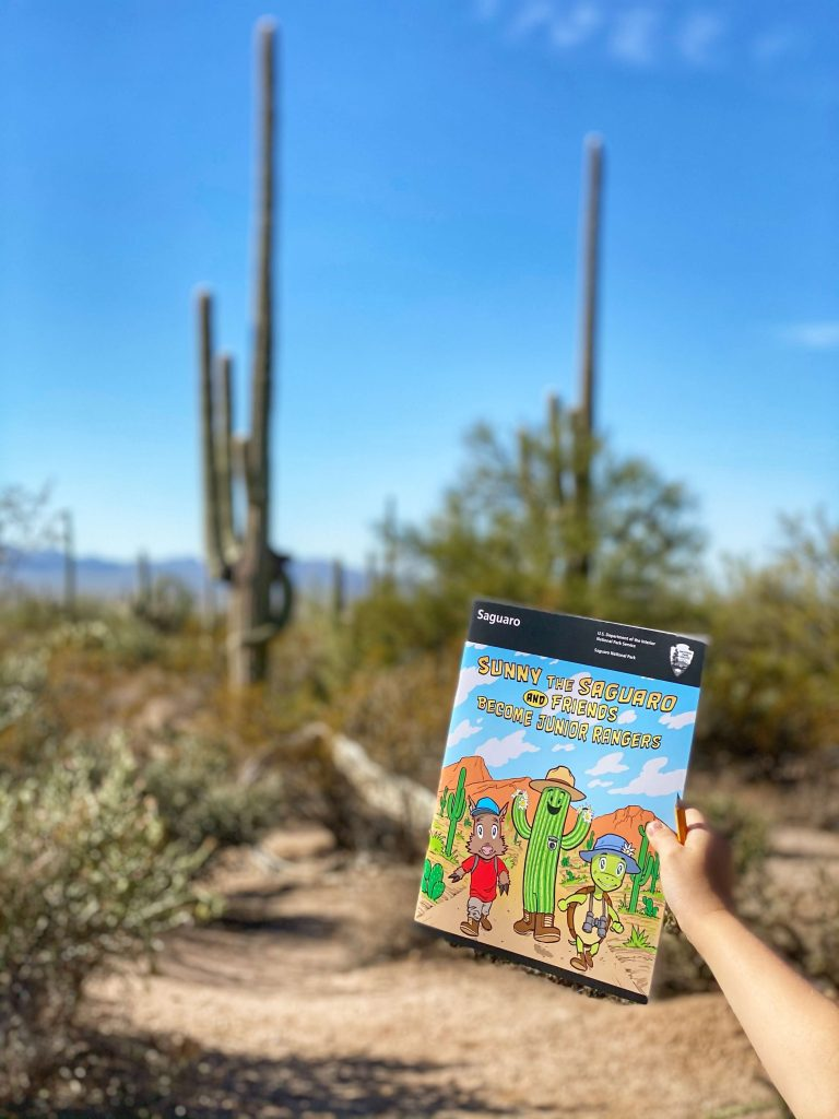 what to do in saguaro national park with kids