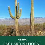 visiting saguaro national park with kids