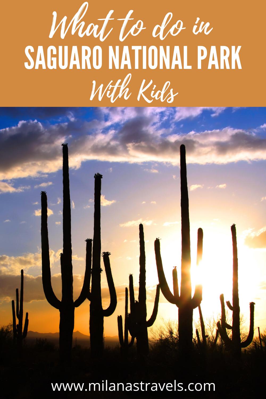 saguaro national park with kids
