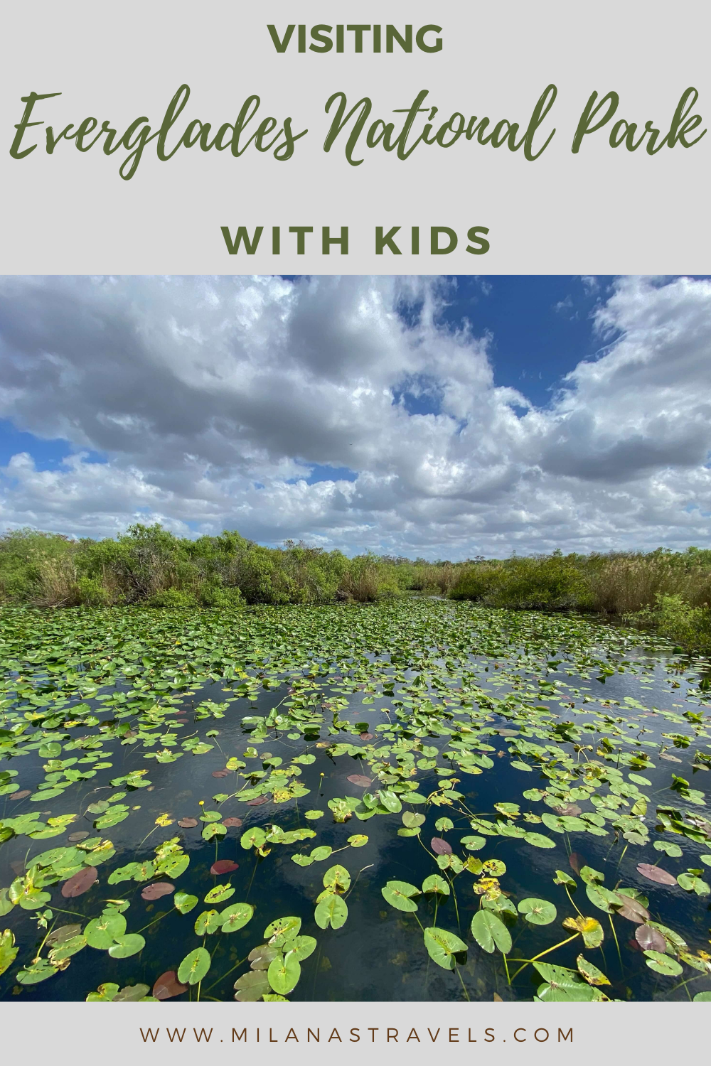 visiting everglades national park with kids