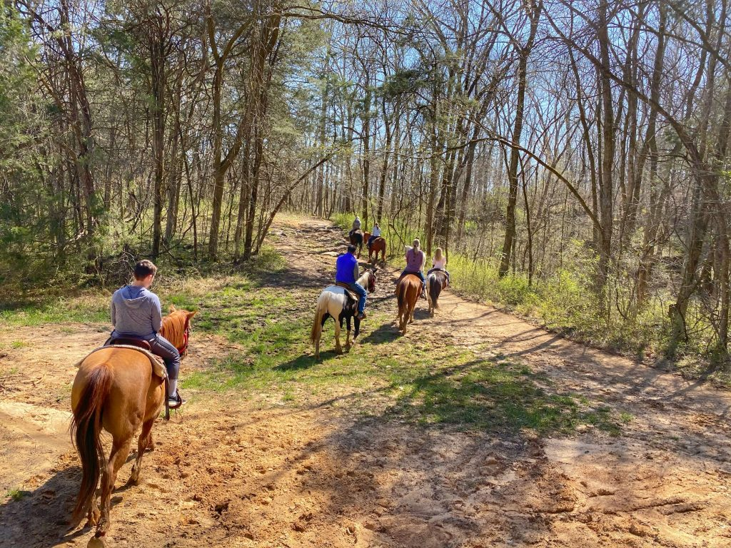 things to do in mammoth cave with kids
