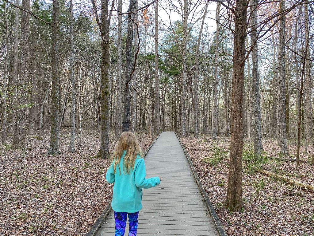 best hiking trails for kids in mammoth cave national park