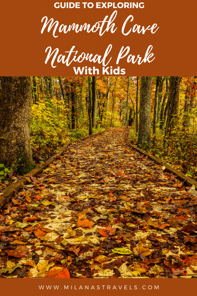 visiting mammoth cave national park with kids
