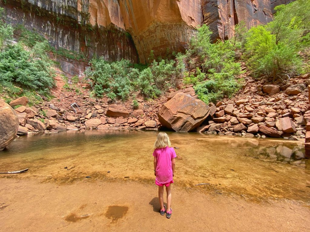 best hikes for kids zion national park