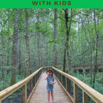 best hiking with kids congaree national park