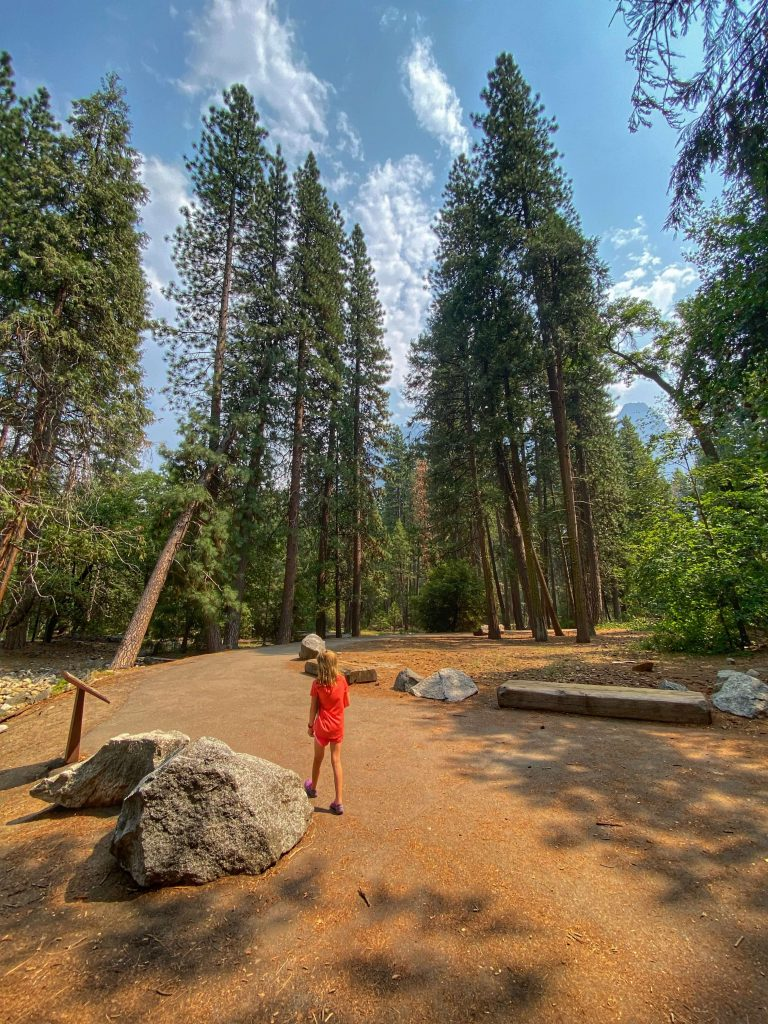 best hiking for kids in yosemite national park