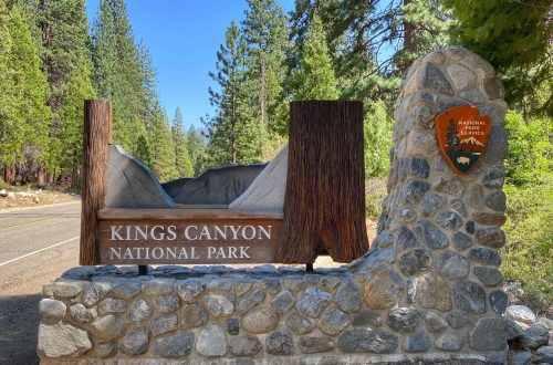 what to do in kings canyon national park with kids