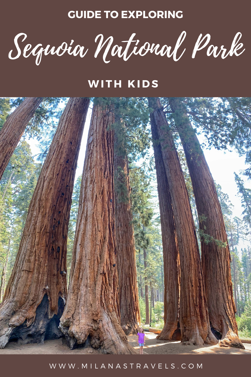 what to do in sequoia national park with kids