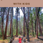 what to do in yosemite national park with kids