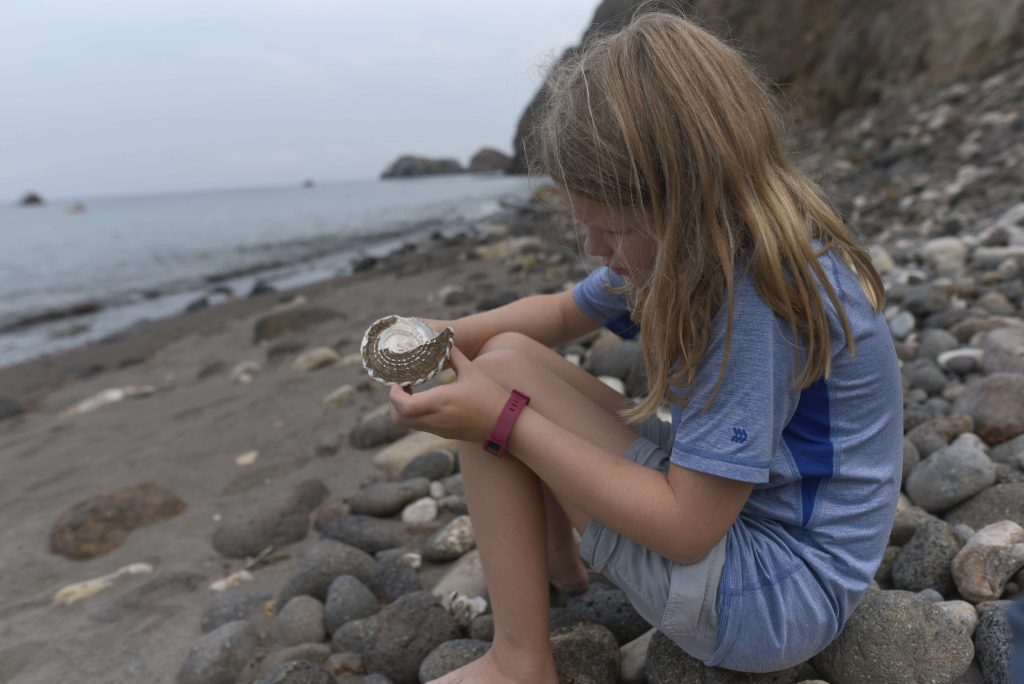 best things to do in the channel islands with kids