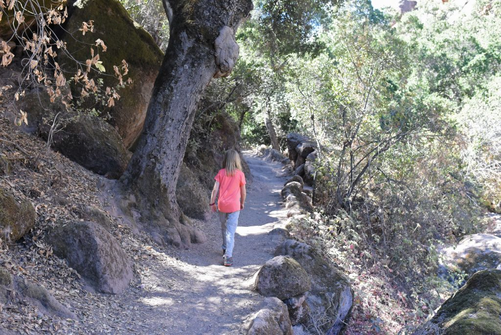 best family hikes in pinnacles national park